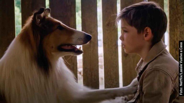 Quién es quién en Lassie Vuelve a Casa, película en Netflix
